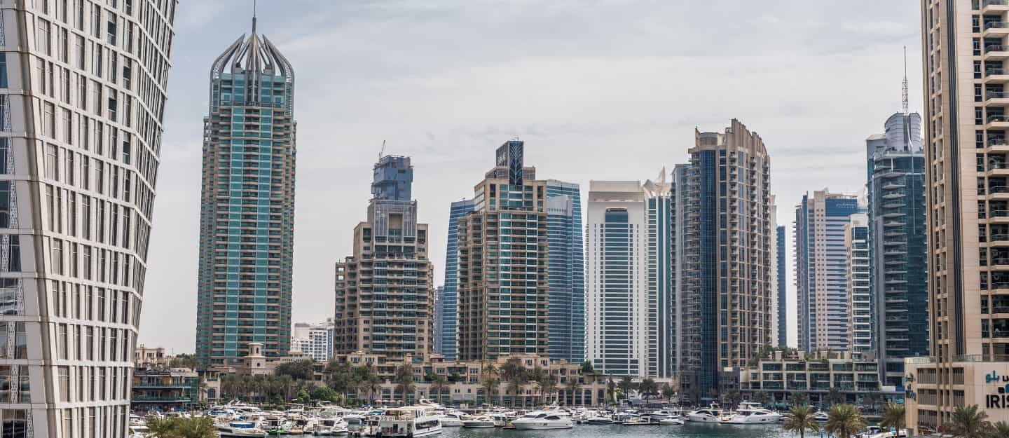 Find Out Why You Need To Transfer Your Company To The Uae
